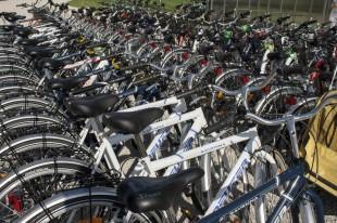 Ajándék kerékpárbérlés az egész családnak